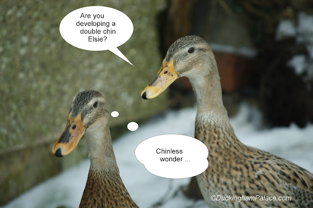"""Princess Lily thought that Elsie was developing a double chin. Elsei thought """"chinless wonder"""" !"""