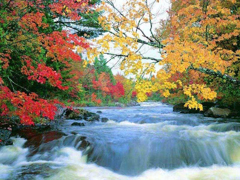 Doğa manzaraları karışık manzaralar manzara fotoğrafı yorum yap