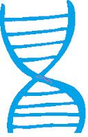 DNA Strand image