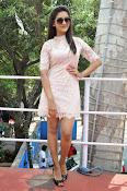 Pooja Jhaveri latest glam pics-thumbnail-15