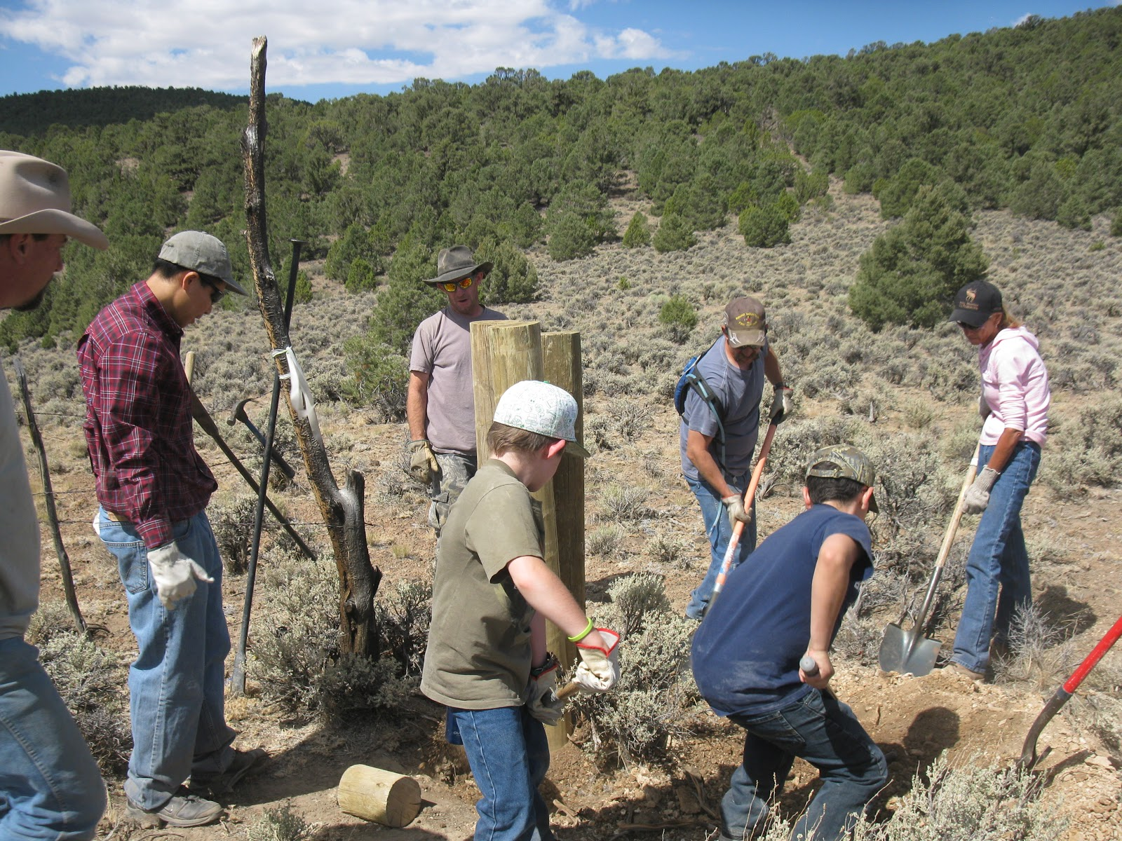 "Elk Habitat Nevada Duty Help Nevada Elk """