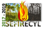 Acceso al proyecto SEFIRECYL
