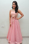 rashi khanna at Bengal tiger audio-thumbnail-18
