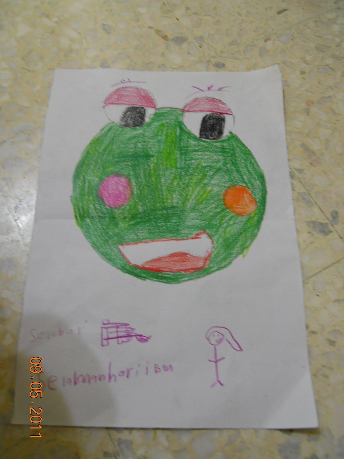 gambar katak hijau - gambar katak