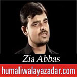 http://www.shiavideoshd.com/2015/07/yeh-matam-e-ali-hai-noha-by-zia-abbas.html