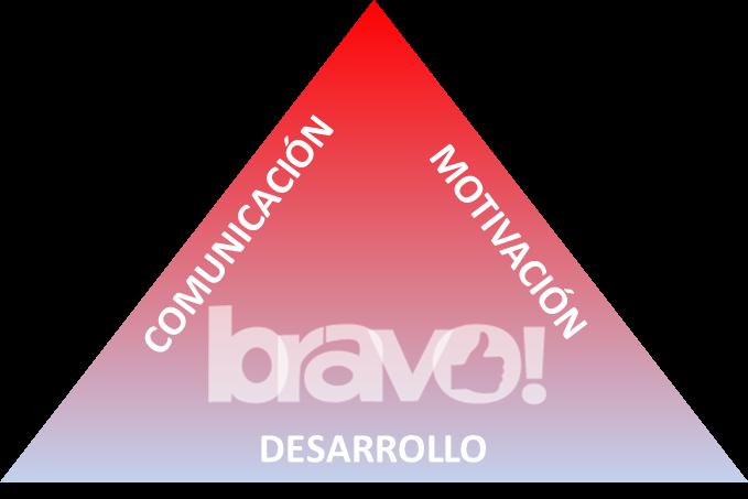 www.videobravo.net