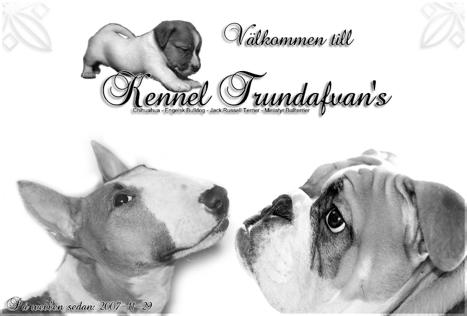 Kennel Trundafvan's