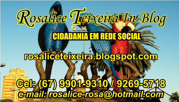 ROSALICE TEIXEIRA