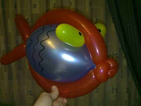 Grandes ojos malditos pero un buen jodido pez