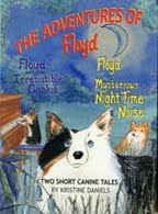The Adventures of Floyd DVD!
