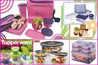 Pilih Tulipware | Tupperware | Lock n Lock | Rubbermaid | Guzzini atau yang lain ?