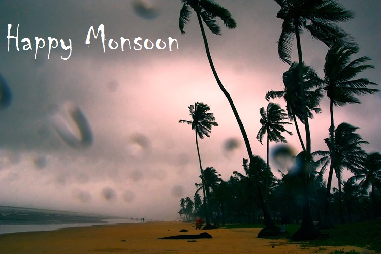 Free download monsoon hd photo gallery and images for Monsoon home wallpaper uk