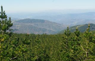 Taramundi, vista de la zona occidental del concejo desde la ruta del Ouroso