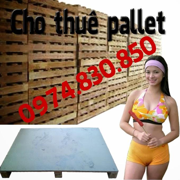 sử dụng gỗ pallet làm đồ nội thất