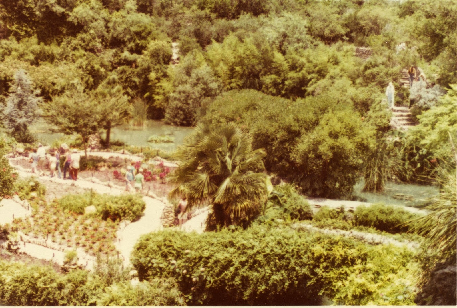 ABT UNK: Travel Tuesday: San Antonio\'s Brackenridge Park Area, 1944 ...