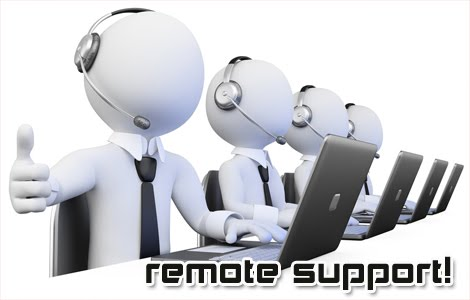 Online/ Remote Support Service
