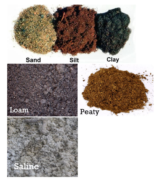 Vertical window farming types of soil for Soil and its types
