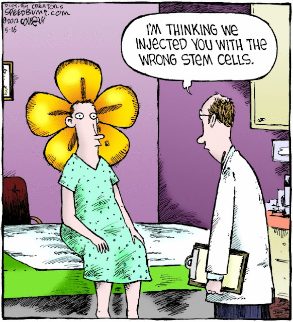 Funny Wrong Stem Cells Injection