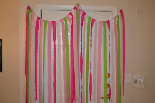 photo backdrop (pink and green - DIY)