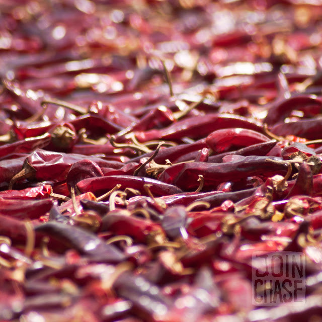 Peppers drying on a sidewalk in Damyang, South Korea.