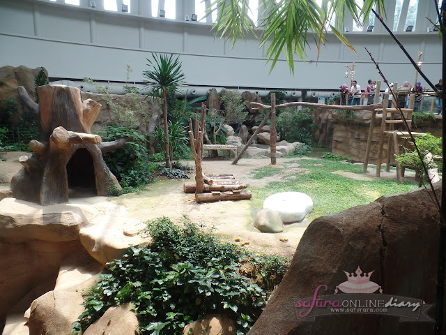 Habitat Panda