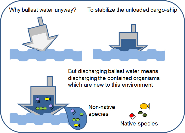Water Spouts Blog Cargo Ships Ballast Water Becomes