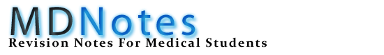 MDNotes