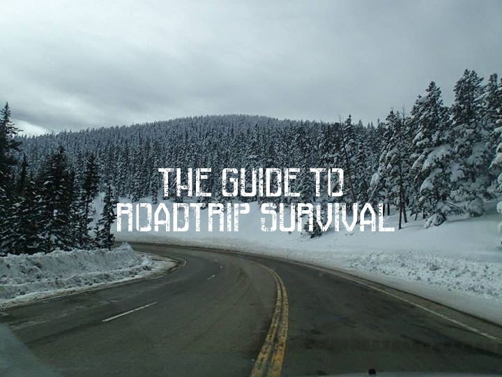 http://www.mountainenthusiast.com/2014/04/the-guide-to-roadtrip-survival.html