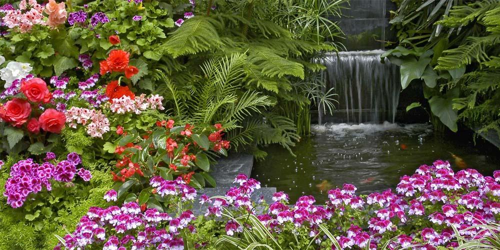 Mantenimiento jardines mallorca for Jardines mallorca