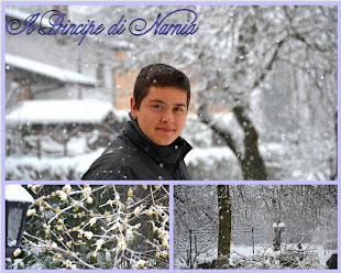 Il principe di Narnia...