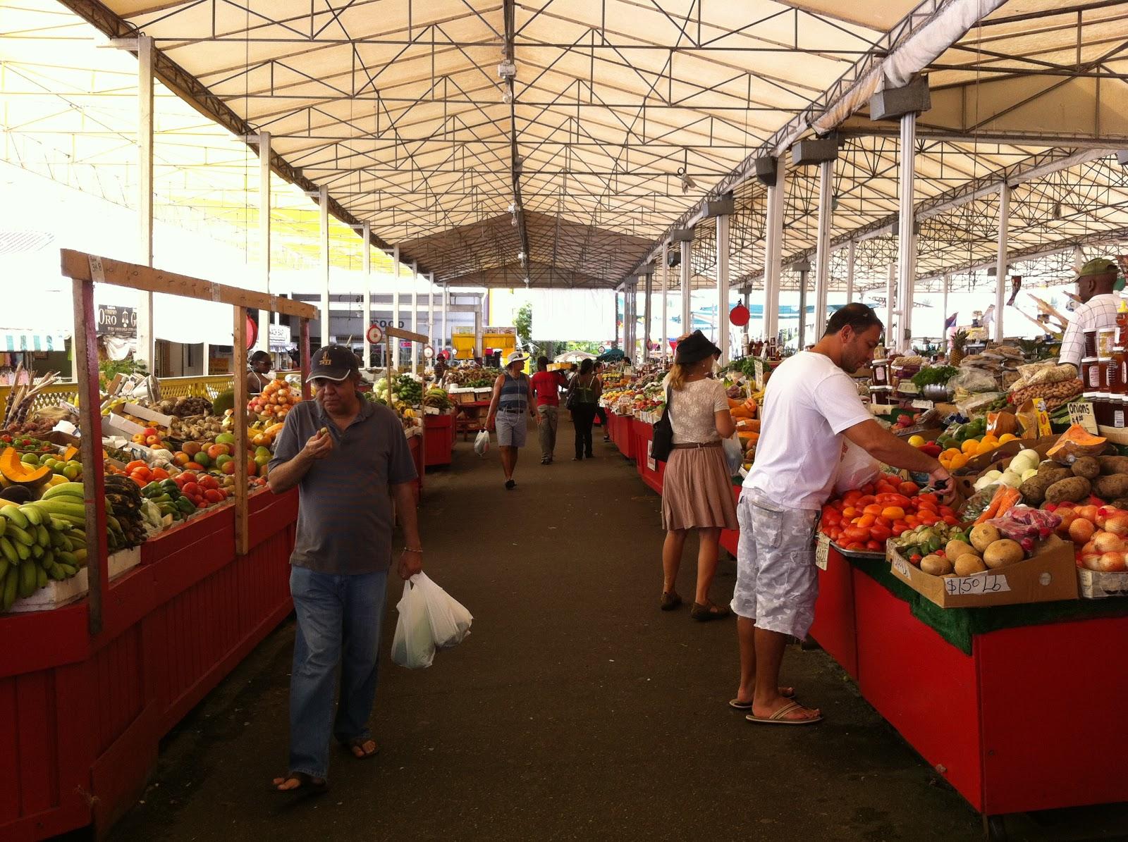 Hollywood Beach Fl Farmers Market