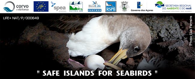"""Safe Islands for Seabirds"""