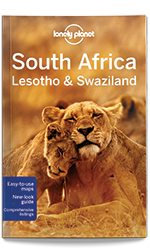 best south africa travel guide book