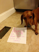 Dog Shaming. http://dogshaming.com/. This is a fun website.bad dogs.