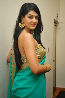 Actress Sakshi Chowdary Pictures in Saree at James Bond Audio Release Function  23