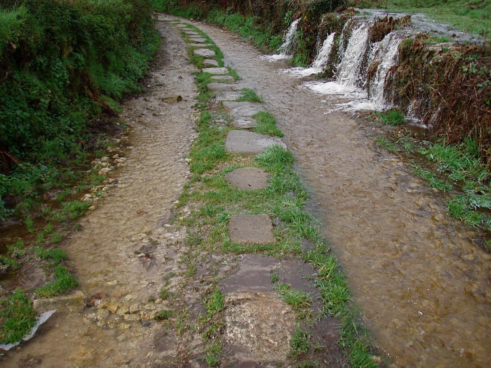 El camino de santiago desde asturias caminos de piedra for Caminos de piedra en jardines