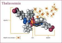 obat herbal thalasemia