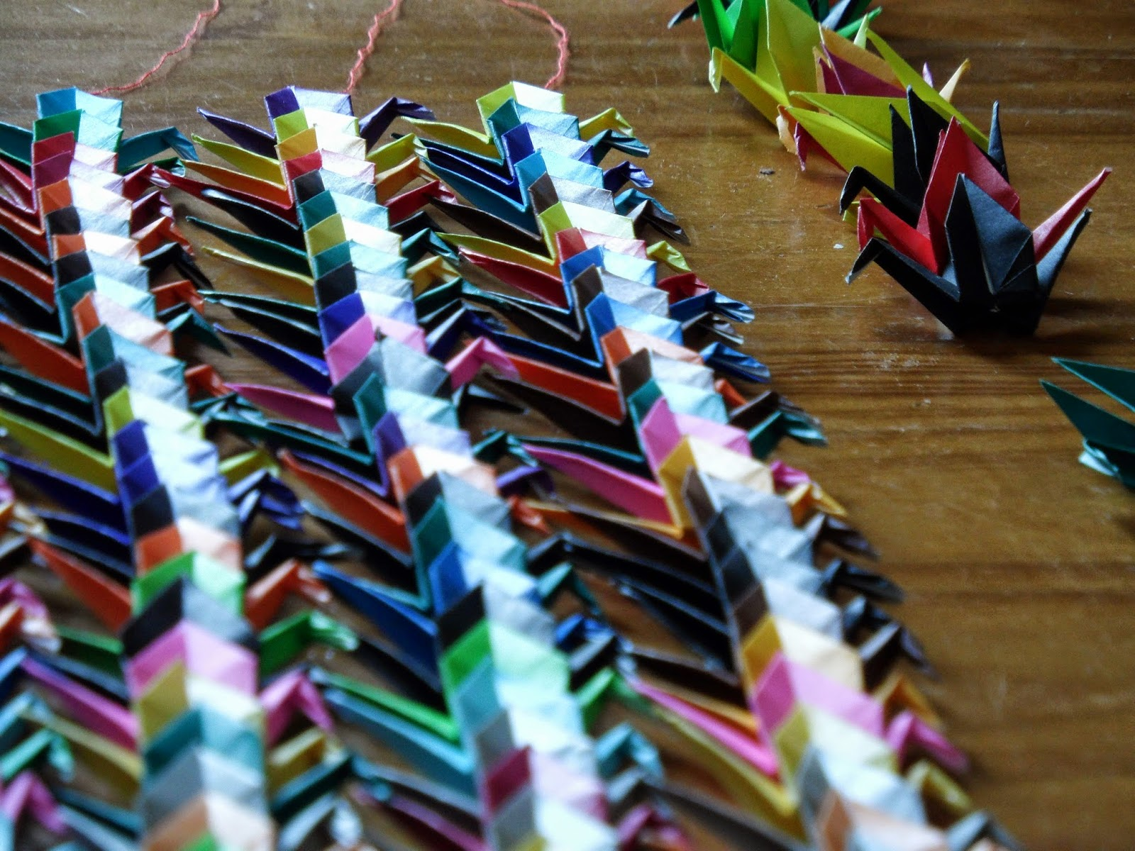 Senbazuru 1000 origami cranes lined up