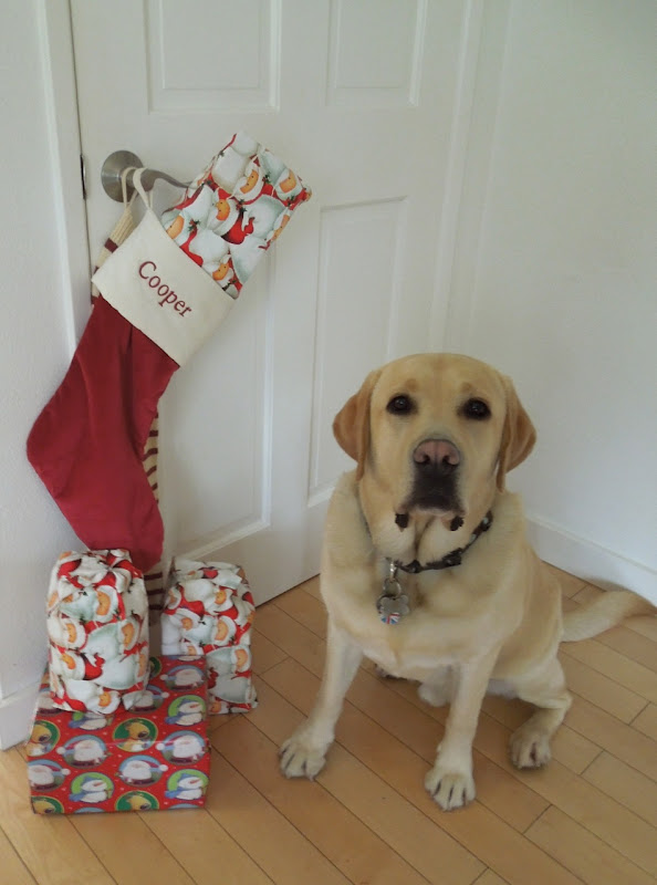 Labrador Cooper Christmas stocking