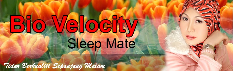 Bio Velocity Sleep Mate