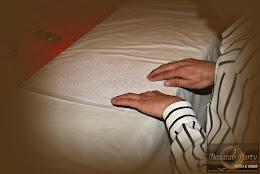 """Bucuresti, Hotel Elizeu, 01-03.04.2011 """"Prietenii cartii Braille """" si """" Cel mai rapid si corect cit"""