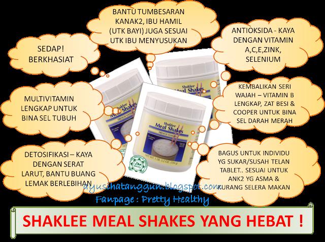 MEAL SHAKES SHAKLEE YANG HEBAT