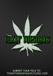 Tokin' Tuesdays