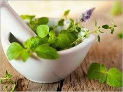 Soigner vos articulations par la phytothérapie