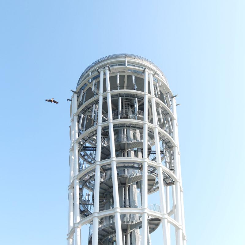 初めての江ノ島タワーの写真