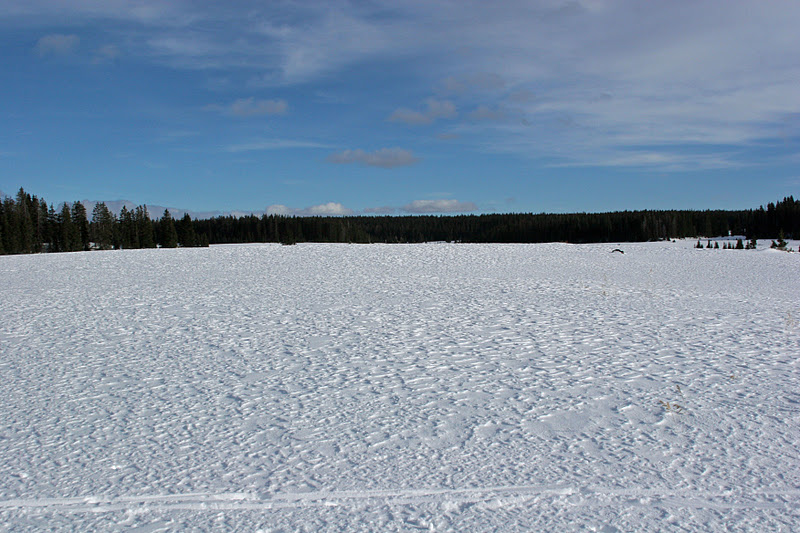 Barren Field Frozen With Snow Drawing Cool snow patterns on a frozen ...