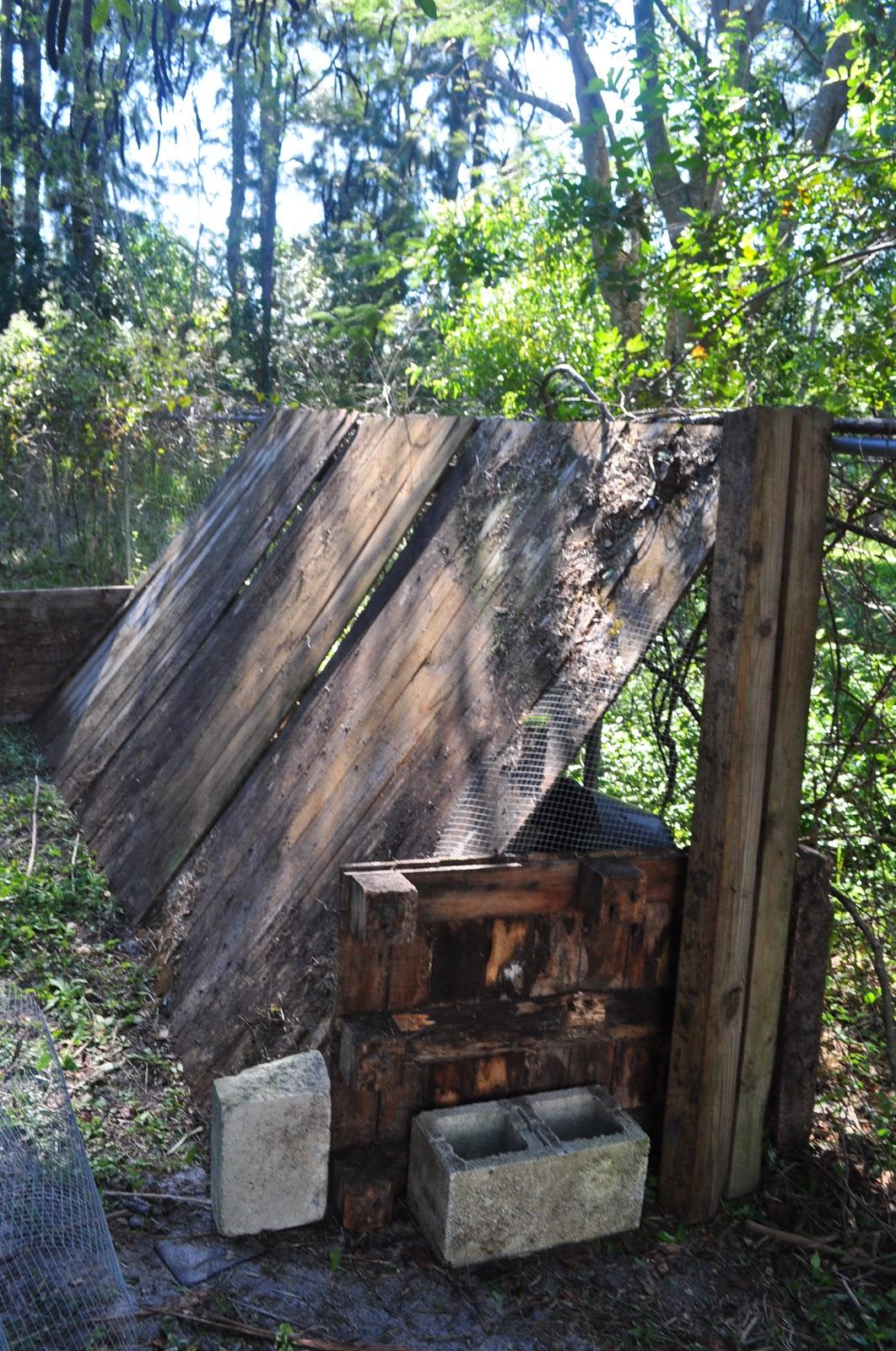 Lavina\'s Healthy Home: Temporary DIY Chicken Coop