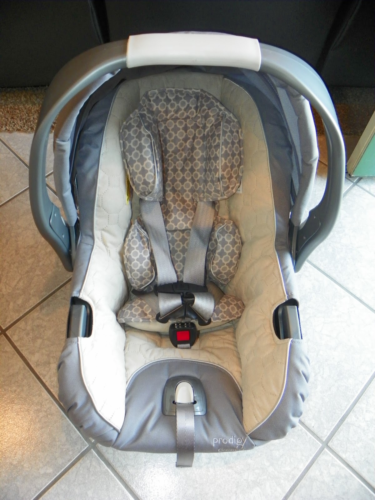 Summer Infant Prodigy Car Seat Stew