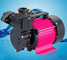 CRI Self Priming Monoblock Pump SHINE-100 (PSM-7) 1PH (1HP) Online, India - Pumpkart.com