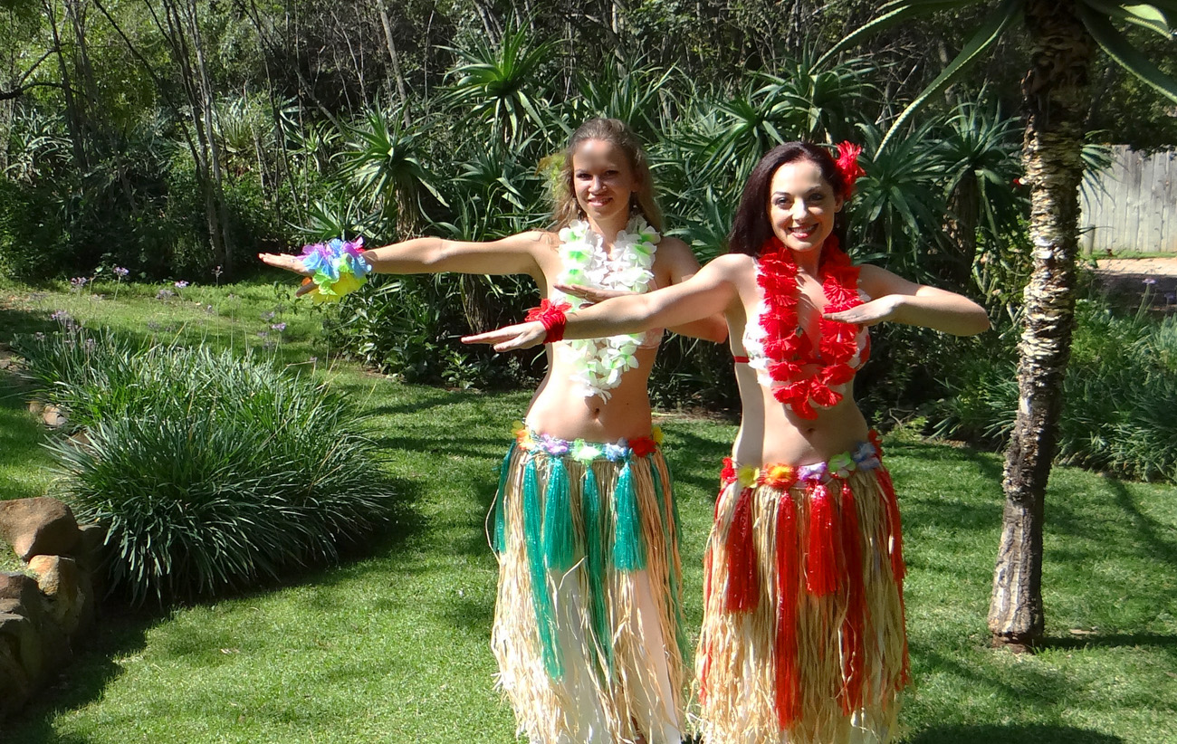 the rebirth of hula how hawaiian